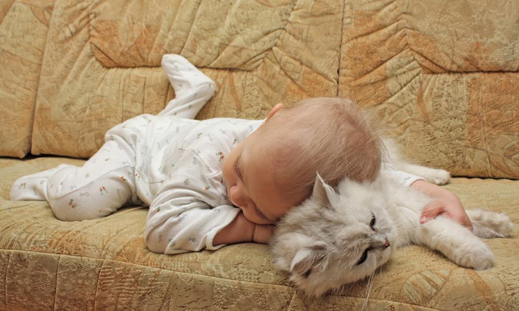 если во сне бежишь как животное на четырех конечностях