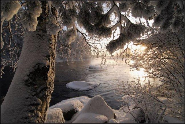 1258056736_winter013.jpg