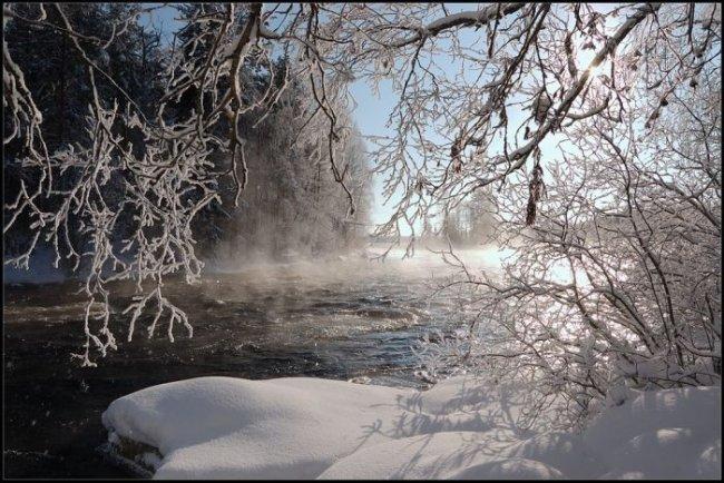 1258056744_winter012.jpg