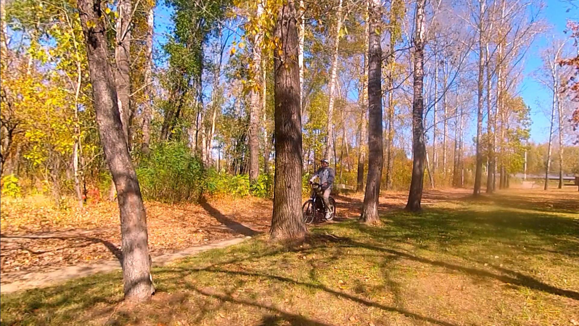 20 Падают листья  Соловьев Андрей.jpg