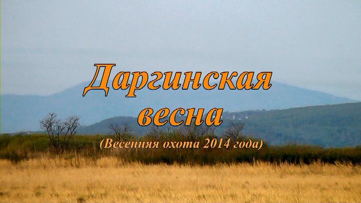 50 Даргинская весна Ничиков.jpg