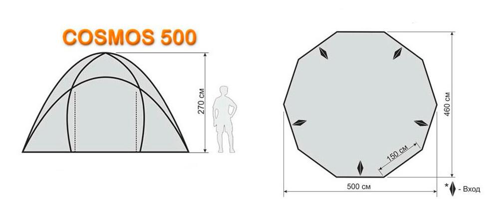 cosmos-500-01.jpg