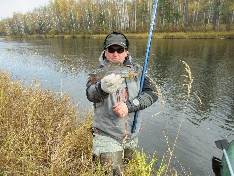 отчет о рыбалке на хариуса