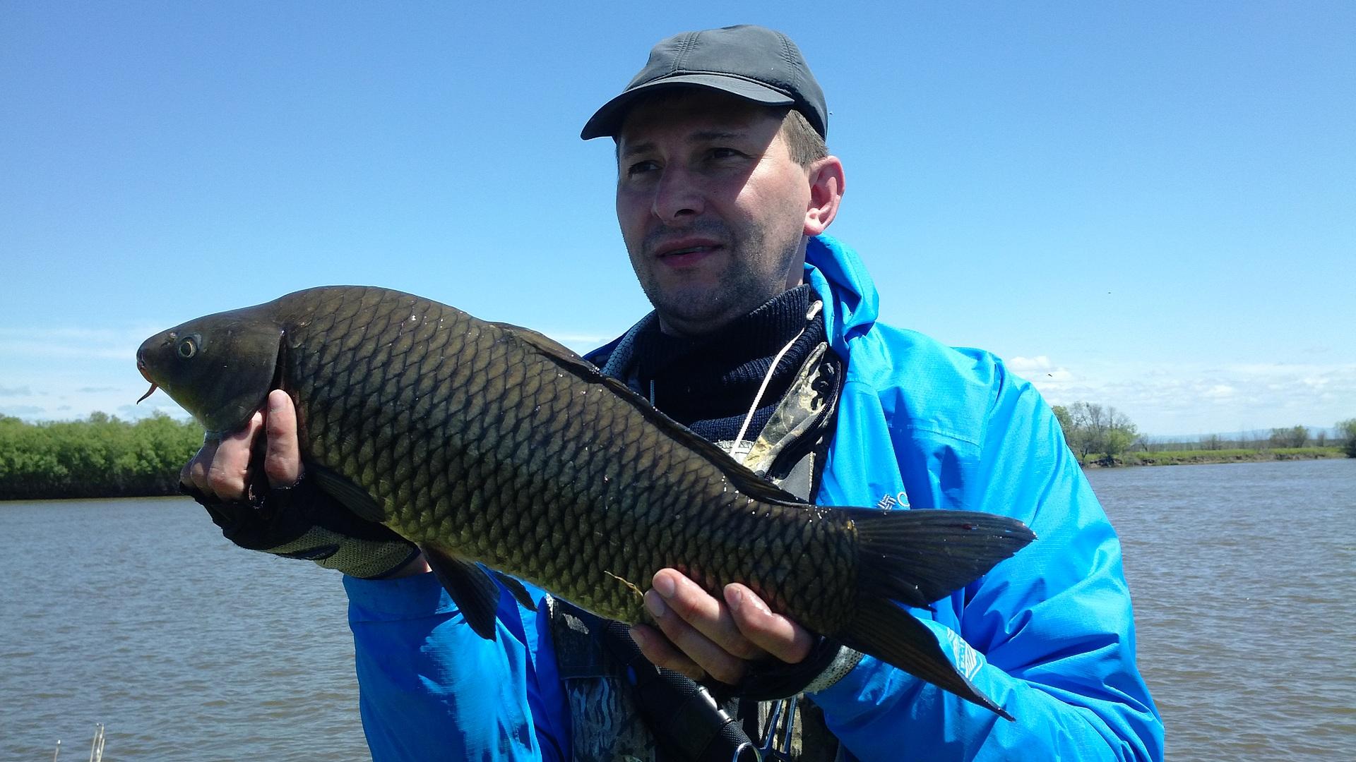 рыбалка связующие компоненты для прикормки
