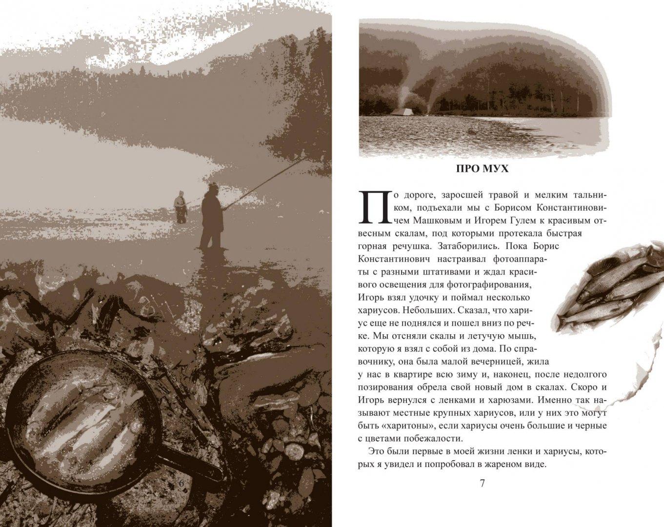 Книга-3.jpg