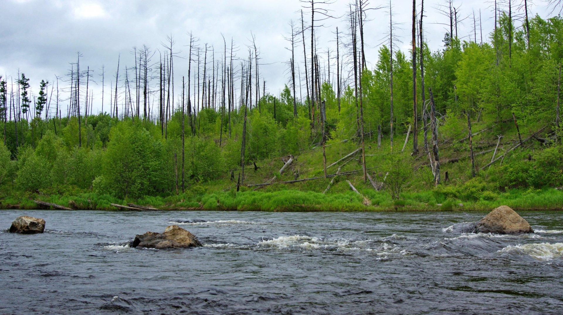 рыбалка в хабаровском крае летом