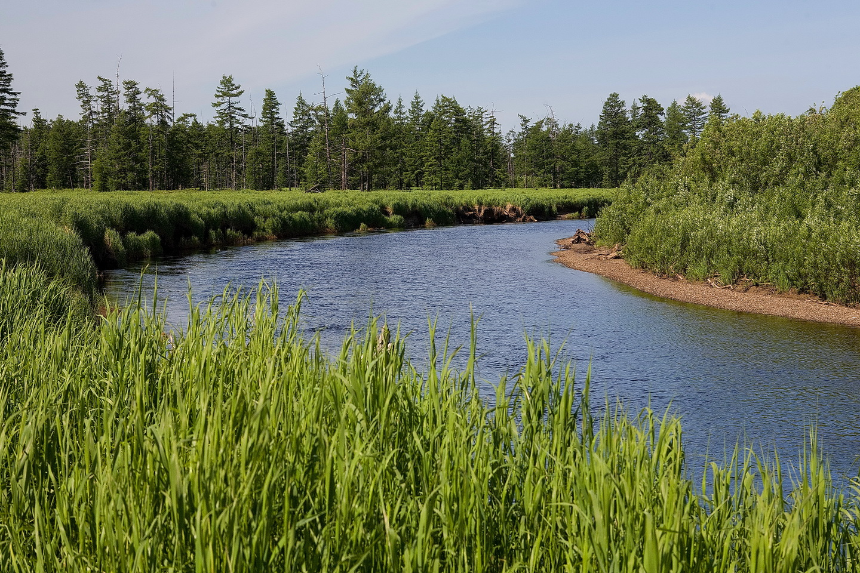 Река Оленья_новый размер.jpg